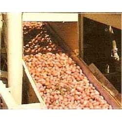 flat food belts conveyor