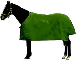 Turnout Rugs New Zealand Horse Blankets