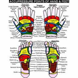 Acupressure Points Chart Pdf Therapy charts - sujok charts exporter ...