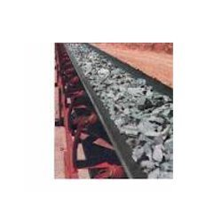 Industrial Handling Conveyor