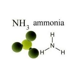 Ammonium Based Products
