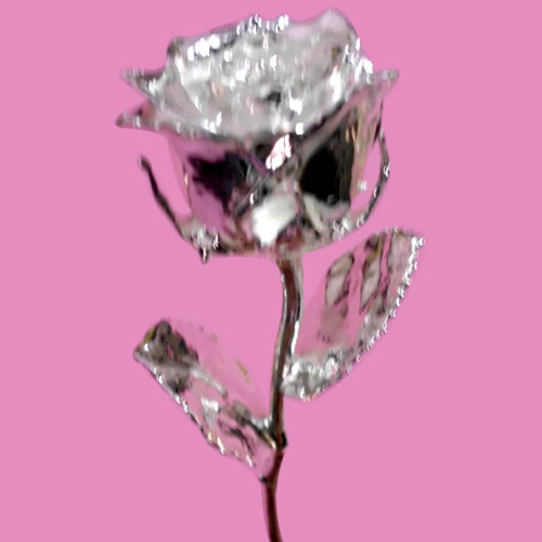 Silver Plated Rose 6 Inches