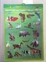 Kids Learning Chart