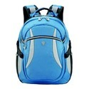 Stylish Laptop Backpacks
