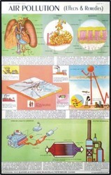 Air Pollution (Effects & Remedies) Chart