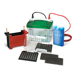 Wet /Tank Blotting System