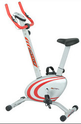 Magnum Upright Bike