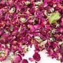 Herb Rose Petals