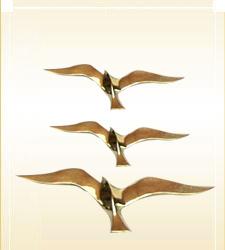 Brass Nautical Seagull