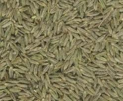Cumin is the second most popular spice in the world after black pepper.
