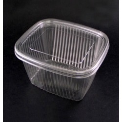 Disposable Plastic Containers Disposable Containers Manufacturer