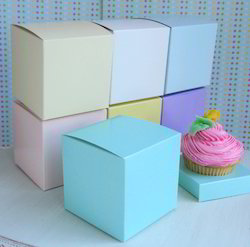 Cup Cake Boxes in Plain Colors