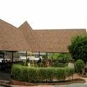 Landmark Roof Shingle