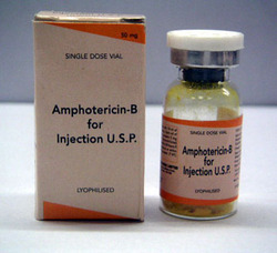 pharmaceutical drug amphotericin b manufacturer from