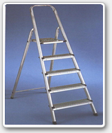 Wrought Iron Ladder