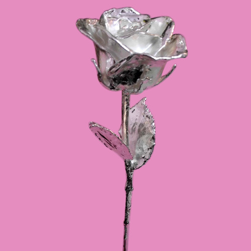 Silver Plated Rose 17 Inches