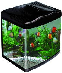 imported-fish-tank-250x250.jpg