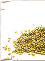 coriander seeds amp fenugreek seeds