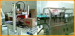 Labeling / Packing & Packaging Machine