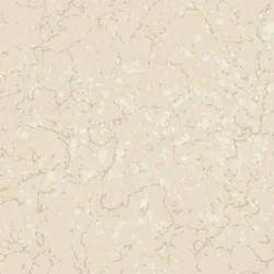 Beautiful Marble Tiles