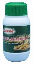 Biopesticides-Metarhizium