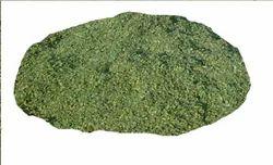 dry kasuri methi trigonela foenum grecium