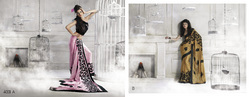 Designer Catalogue Sarees