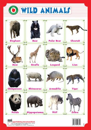 wild animals hindi essays