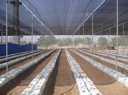 customized greenhouses