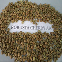 Robusta Coffee Bean AA