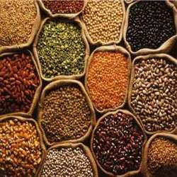 Indian+Pulses