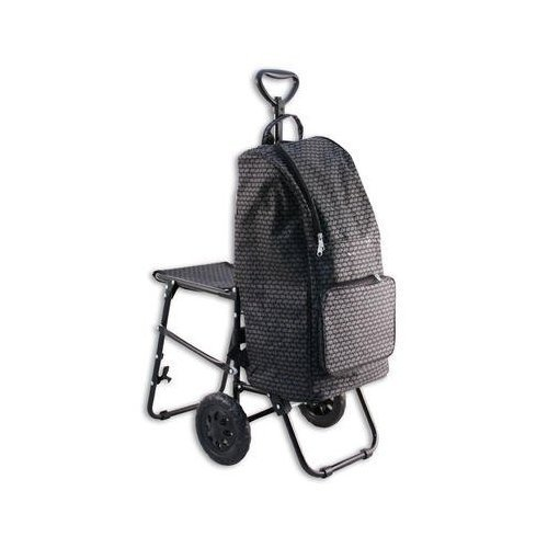 Shopping Cum School Trolley Bag with Seat...