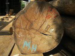 malasian sal wood