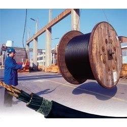 Trailing / Crane / Elastomeric Cables