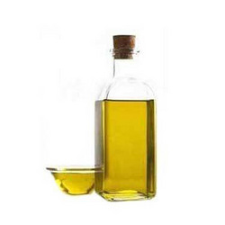 Thuja Wood Oil