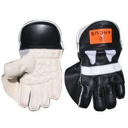 Top Grade Wicket Keeping Gloves