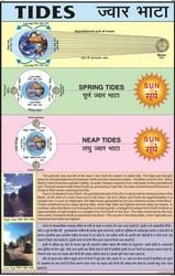 Tides Chart