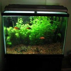 UV Sterilizer, Clarifiers; For Aquarium and Pond Green Water
