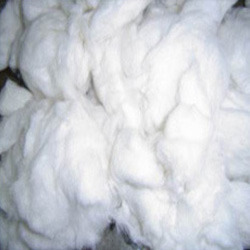 Processed Cotton