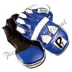 Professional Wicket Keeping Gloves
