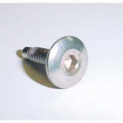 Socket Head Bolt