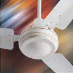Plain Look Ceiling Fan