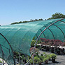 Green House Shading Net