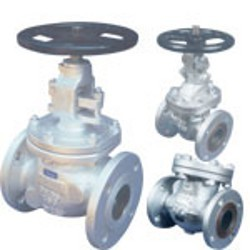 Expert Gate Globe Check Valves