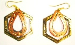 Earrings ER1020