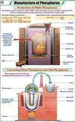 Phosphorus For Chemistry Chart