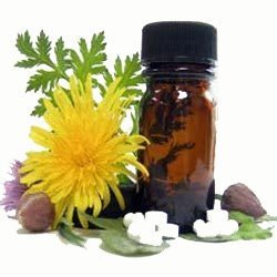 Homeopathic Ointments and Creams