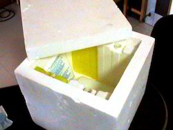 Expanded Polystyrene Box