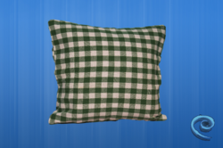 Cushion Cover With Green And White Checks