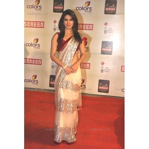 Fashionable Net Saree